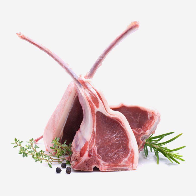 Càrnia Carne y servicio de calidad